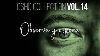 Esta urgencia por despertar - OSHO Talks Vol. 15