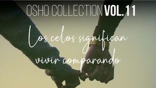He ido coleccionando libros desde los días del instituto - OSHO Talks Vol. 11