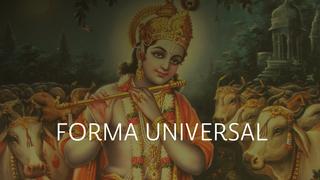 Forma Universal