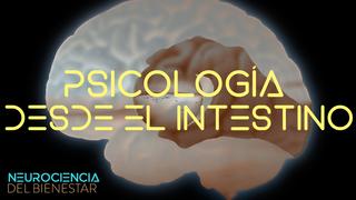 La psicología vista desde el intestino