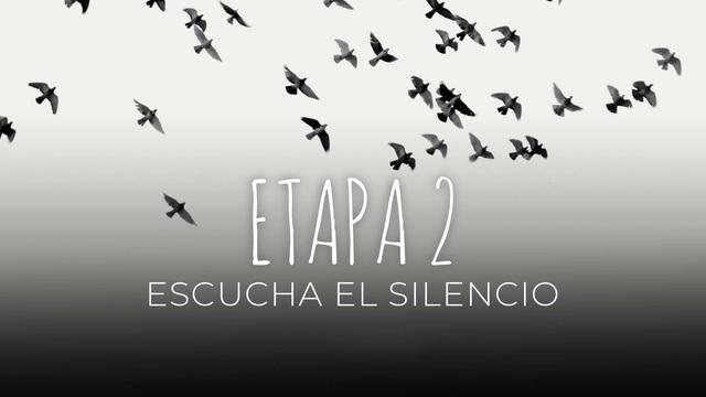 14 Escucha el silencio