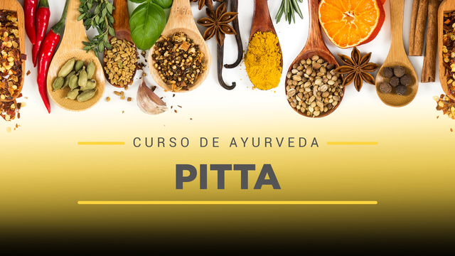06 Pitta