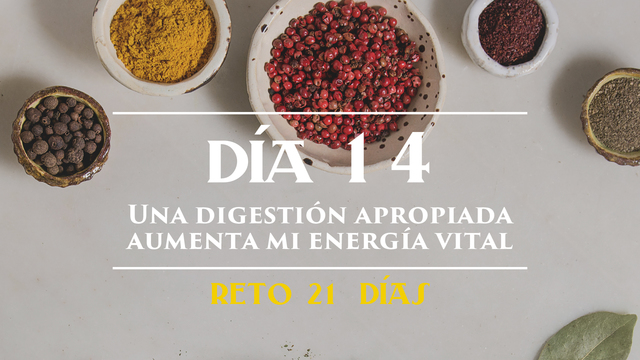 Día 14 - Una digestión apropiada aumenta mi energía vital