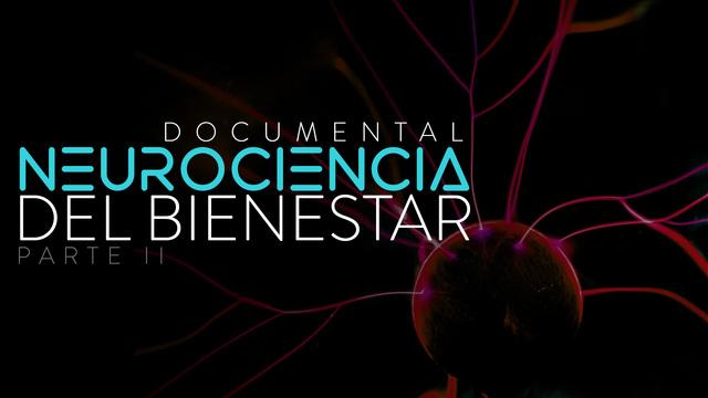 La neurociencia del bienestar. Parte II