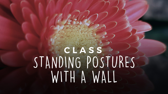 Standing postures with a wall
